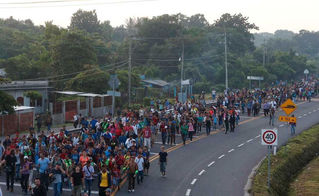 Honduranska migranter till fots på väg mot USA. Bilden är från i söndags i Ciudad Hidalgo i Mexiko.