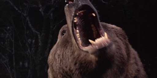 """""""Grizzly"""" (1976)."""