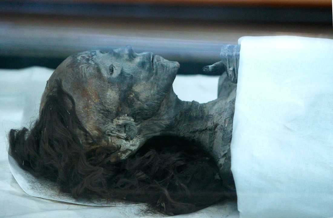 Tutankhamons farmor, drottning Tiye. Också nära släkt med Nefertiti.