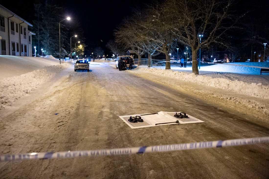 Privatpersoner larmade polisen om skottlossningen sent på fredagskvällen.