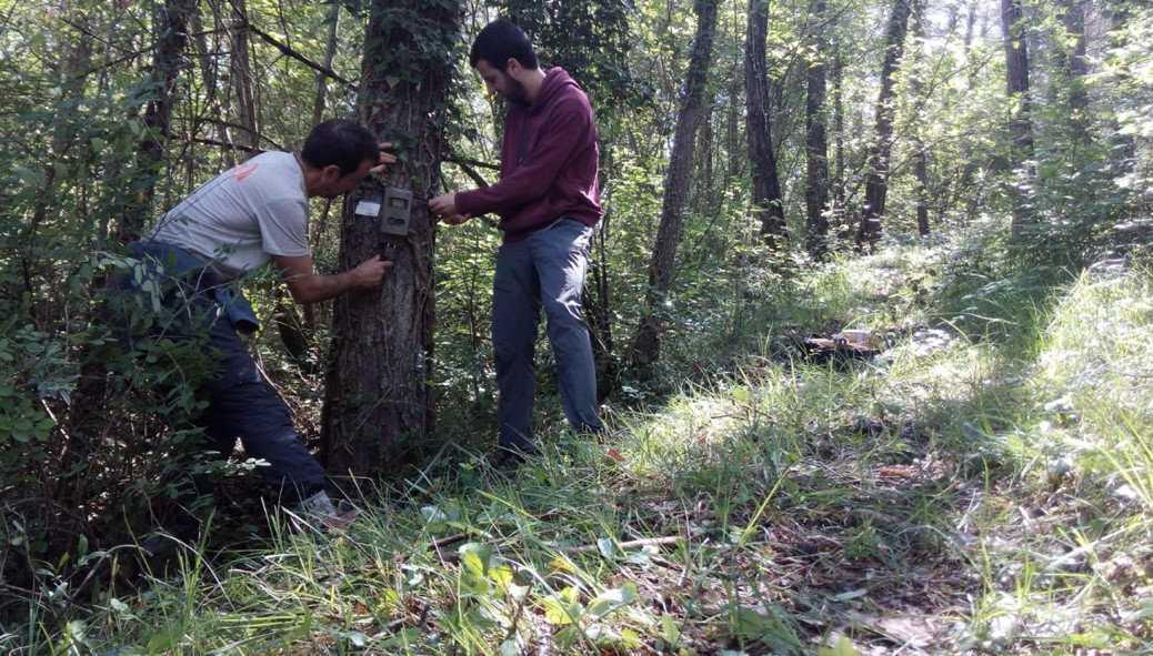 Ferran Sayol (till höger) och Carles Martorell, sätter upp en kamerafälla vid en liten skogsstig i Katalonien.