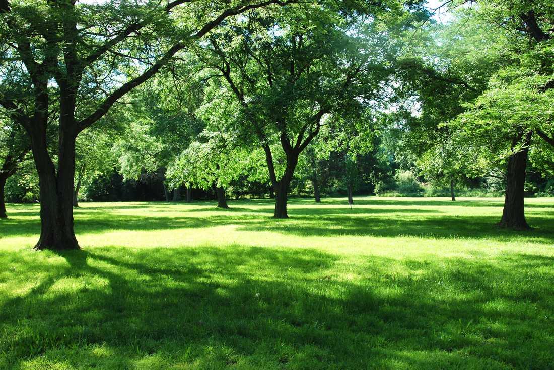 Vinnarparken ska bjuda in till både lek och avslappning.