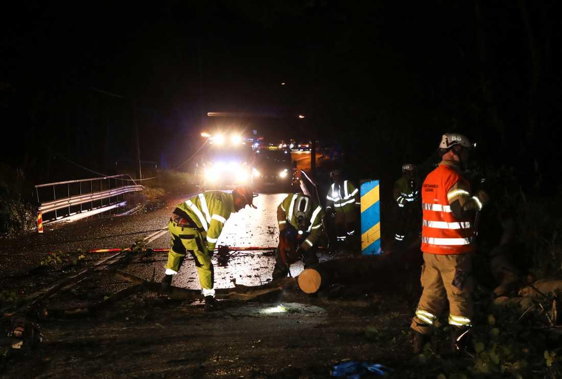 Röjning på väg efter att träd fallit över en bil i Göteborg.