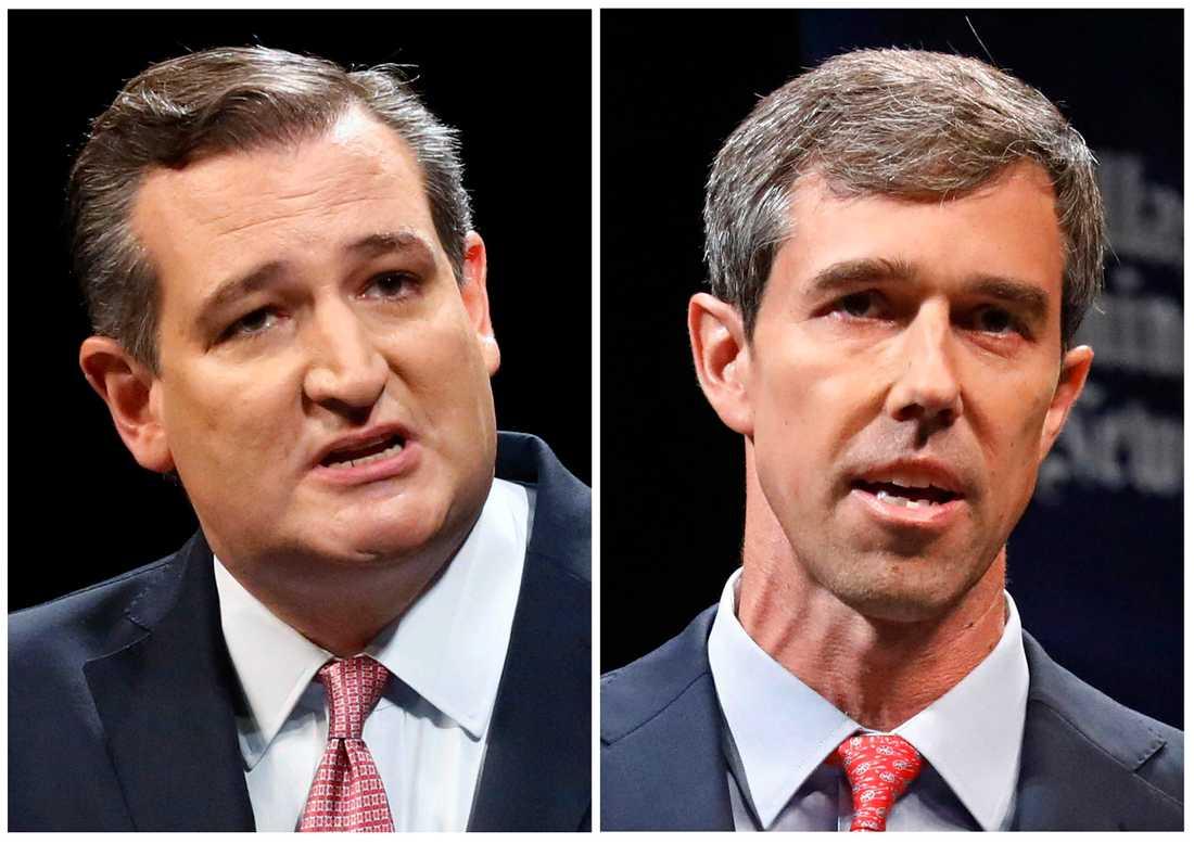 Republikanen Ted Cruz utmanas av demokraten Beto O'Rourke i kampen om senaten i Texas. Montage