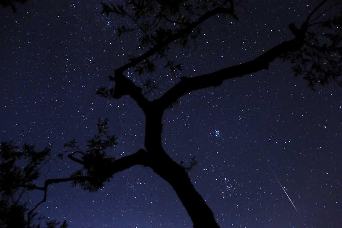 Meteorsvärmen Perseiderna återkommer varje år runt den 12 augusti.