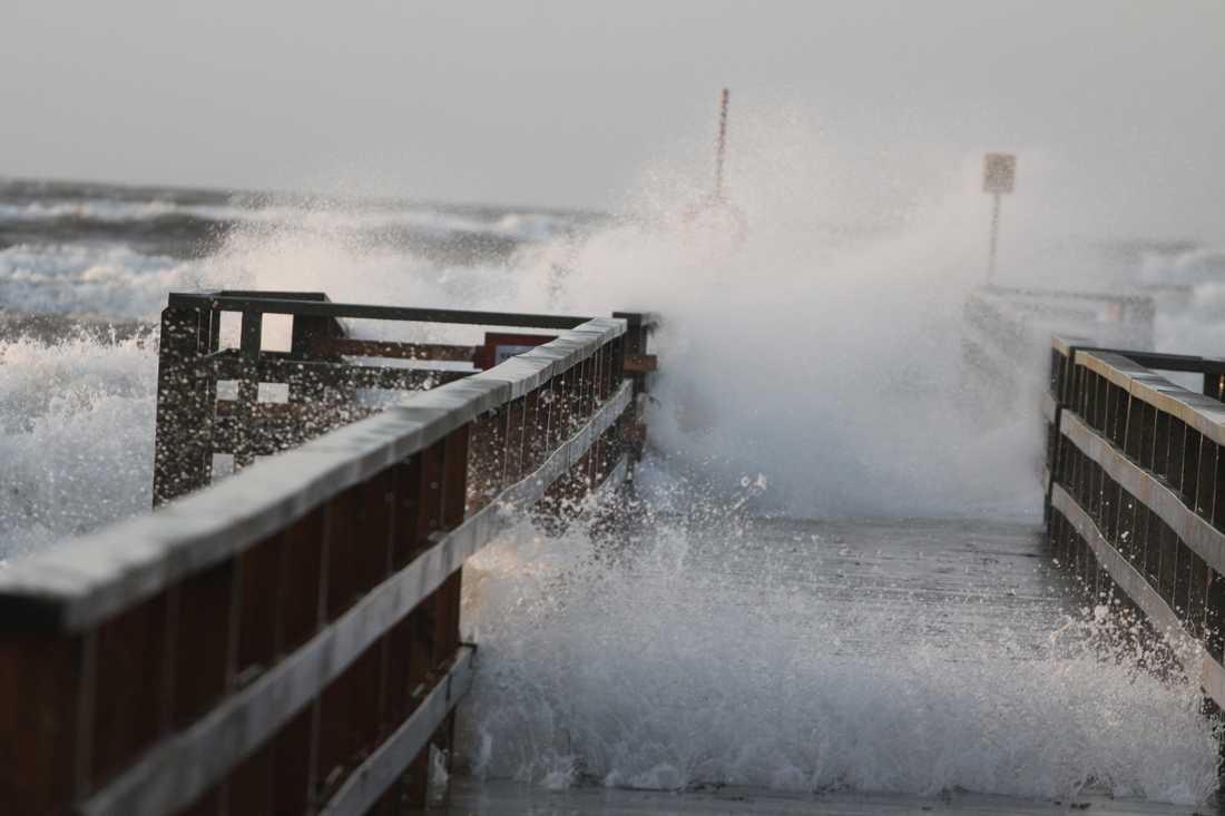 Vågpiskad kaj Vid Klitterhus i Ängelholm börjar vågorna ta sig riktigt, och vissa är omkring 2 meter höga, om inte mer, berättar fotograf Robin Nicander.