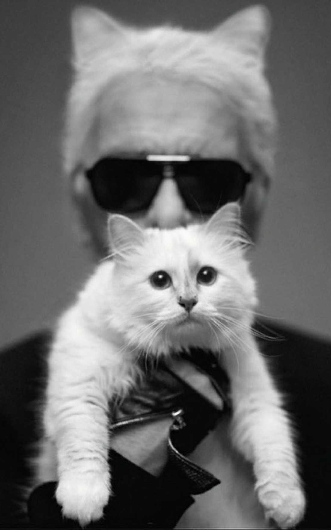 Karl Lagerfeld med katten Choupette.