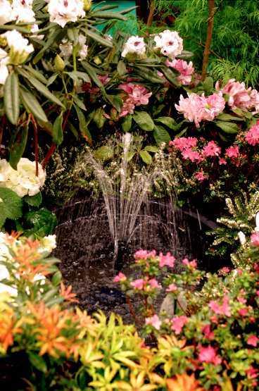 Stenar och rinnande vatten är en annan av årets trender i trädgårdsrabatten.
