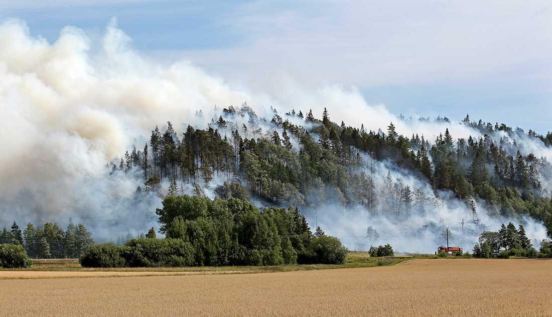 Efter krocken har elden spridit sig till ett stort skogsområde.