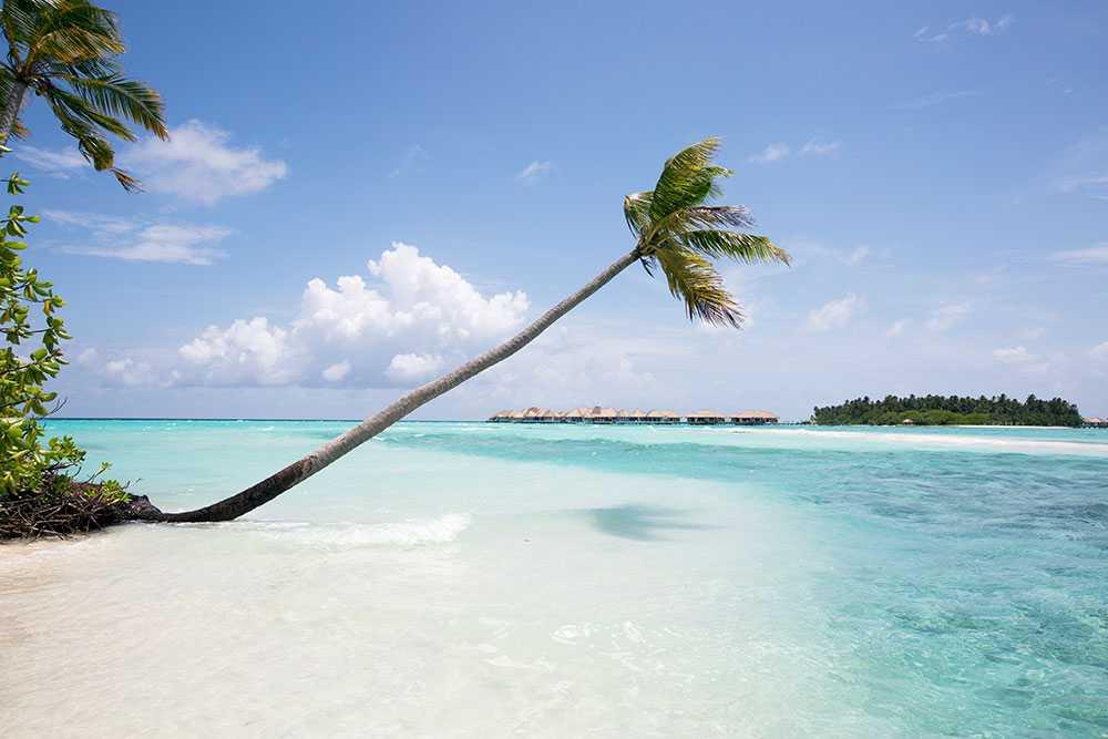 Det politiska läget på Maldiverna skrämmer bort turisterna.