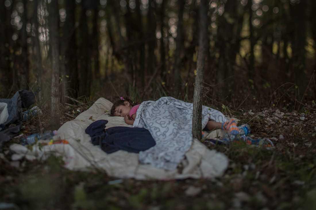 Människor gör sitt bästa för att skapa små skyddade zoner för sina familjer.