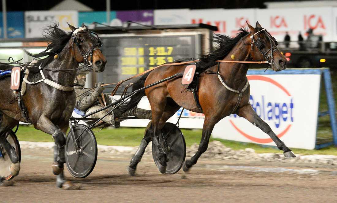 Svensken hade spikat Friend of Nature på Örebro i sista avdelningen. Hästen vann efter målfotodrama.
