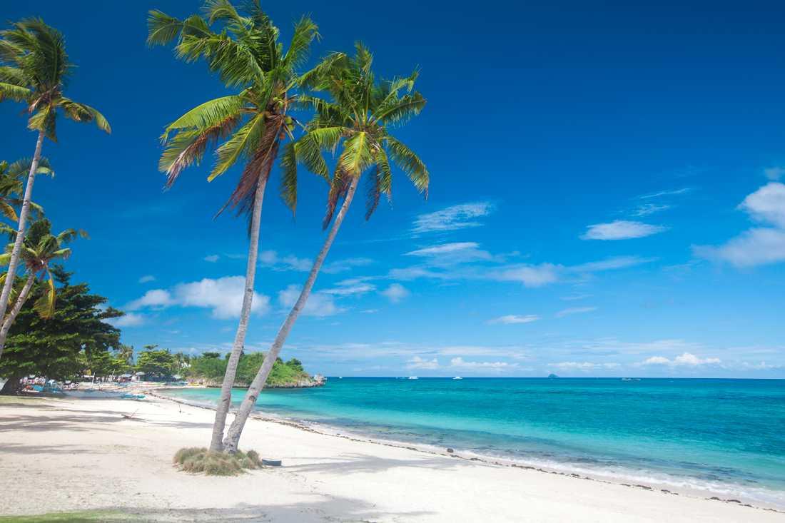 Malapascua är en pytteliten ö som är extra populär bland dykare.