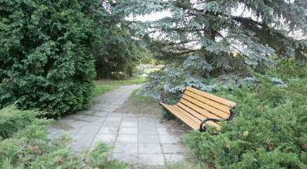 HÄR SKÖTS 17-ÅRINGEN Här, på bänken, satt den 17-åriga kvinnan när hon träffades av en kula i benet.