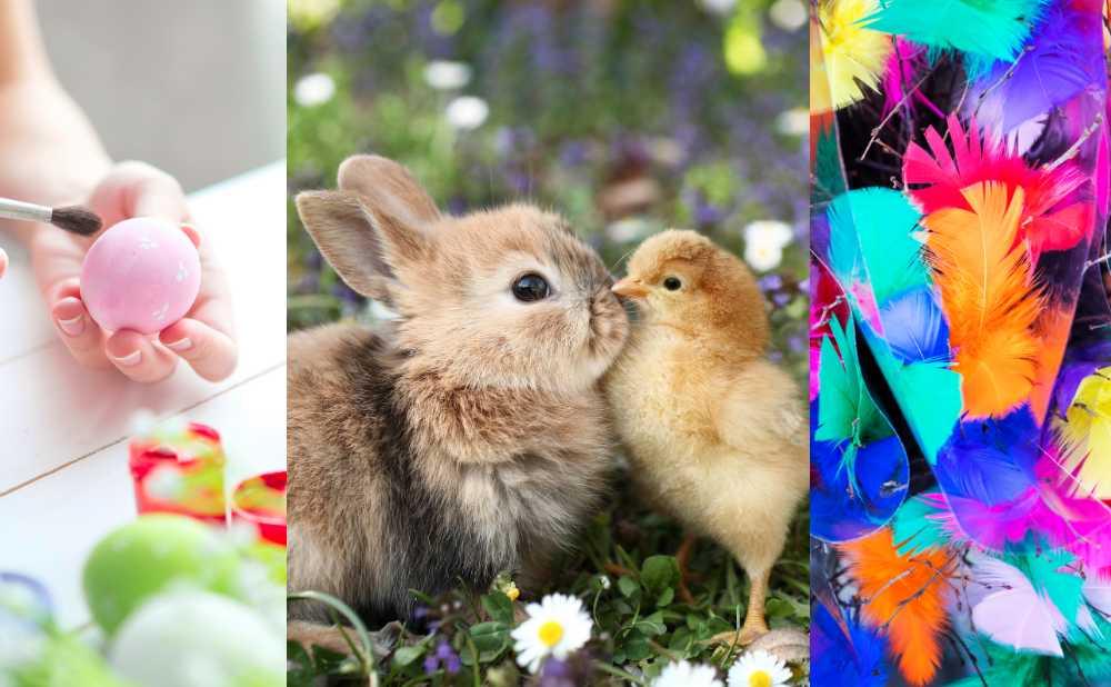Måla ägg, pynta påskris och vänta på påskharen är några av traditionerna runt påskhelgen.