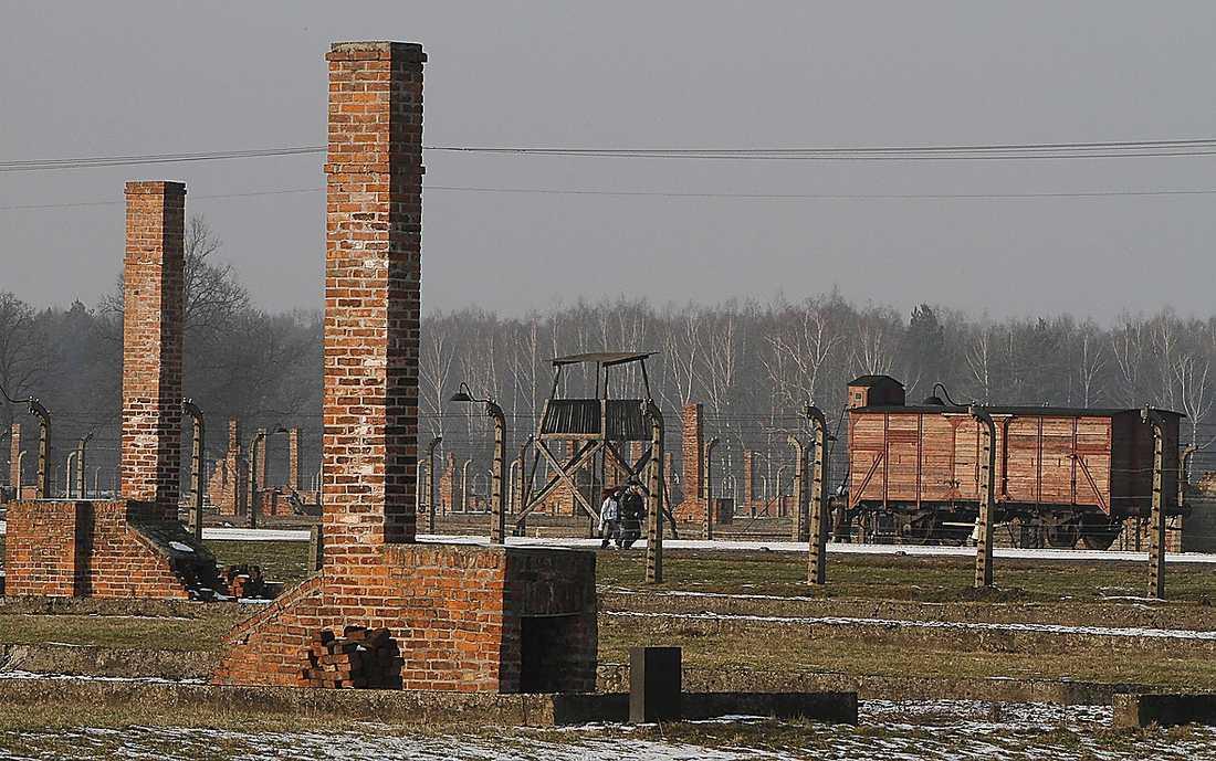 Nationaldemokraterna ifrågasätter koncentrationslägren i Auschwitz.