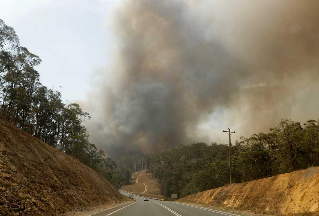 Räddningstjänsten kämpar mot omfattande bränder i staden Perth, där människor uppmanas att lämna sina hem. Bilden är från förra sommaren, då enorma bränder härjade i delstaterna New South Wales och Victoria. Arkivbild.