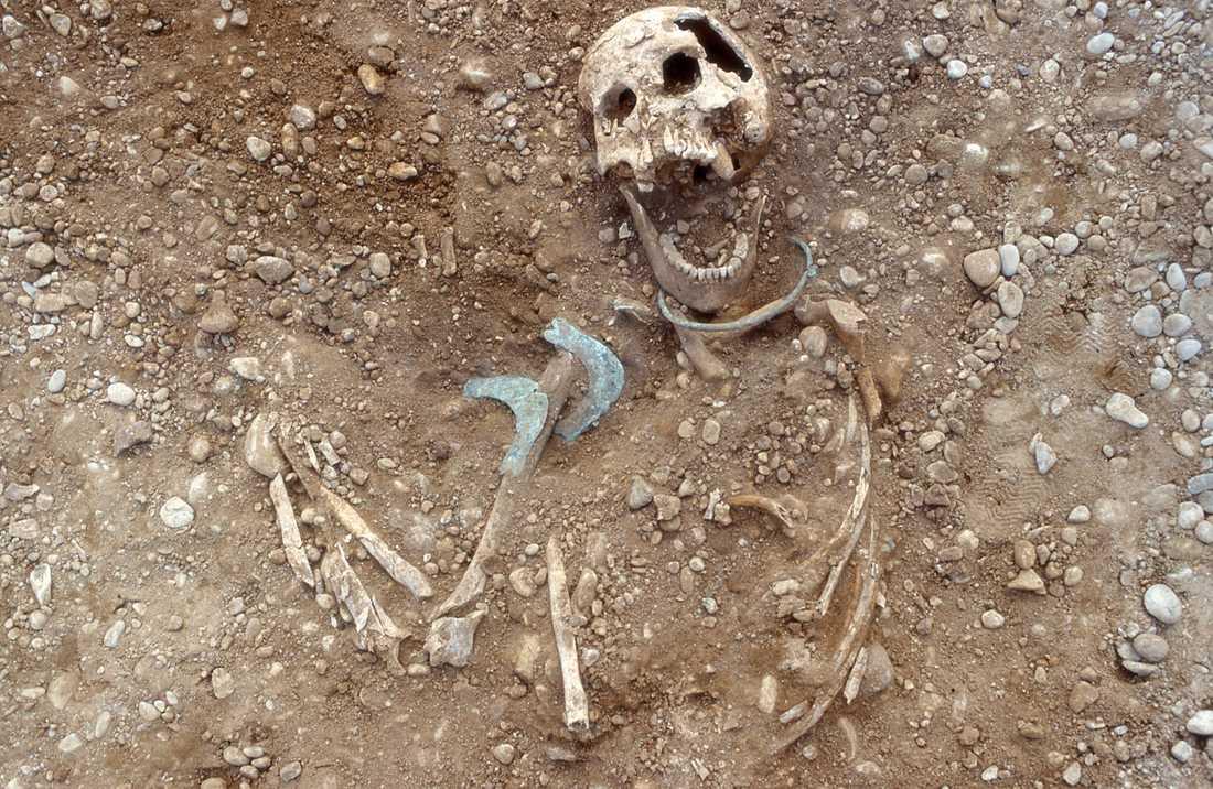 I gravarna hittades många kvinnor, men dessa kom nästan alltid utifrån, inte sällan långt därifrån. Som denna kvinna med hög status som hittades i en av gravarna.