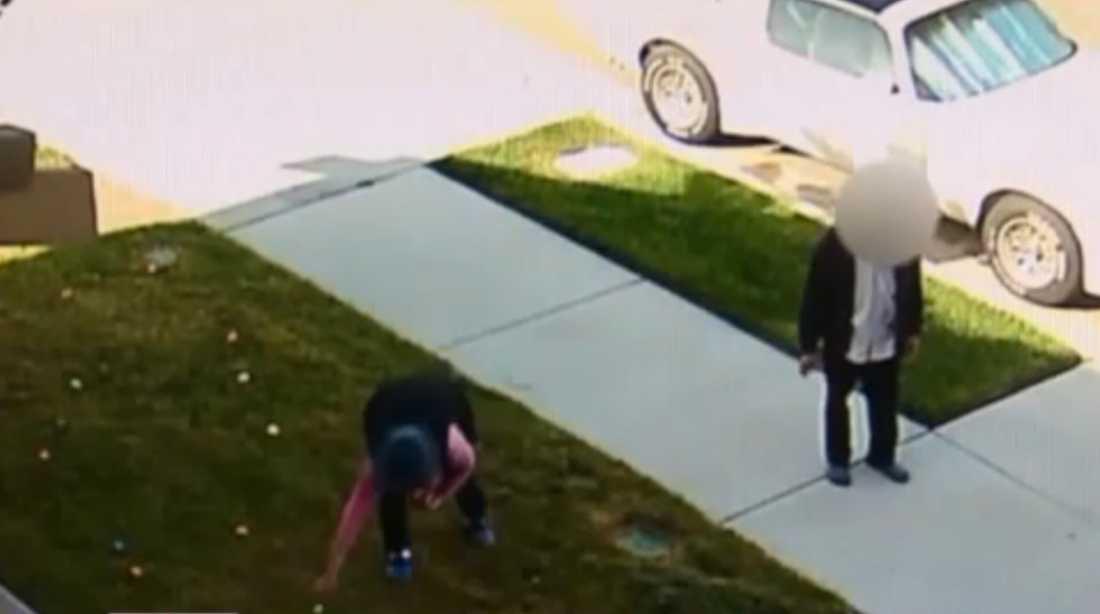 På övervakningsfilmen syns grannarna stjäla äggen.