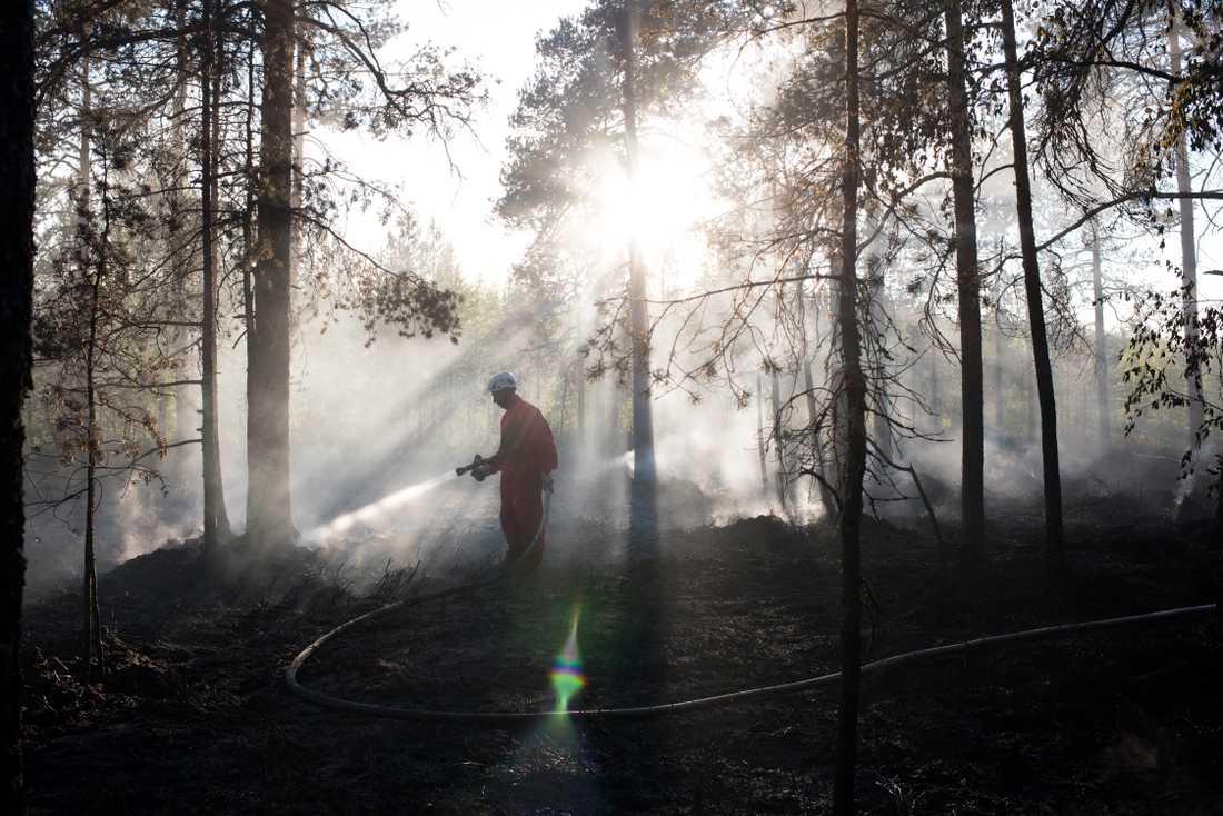 Eftersläckning av skogsbrand utanför Umeå. Arkivbild.