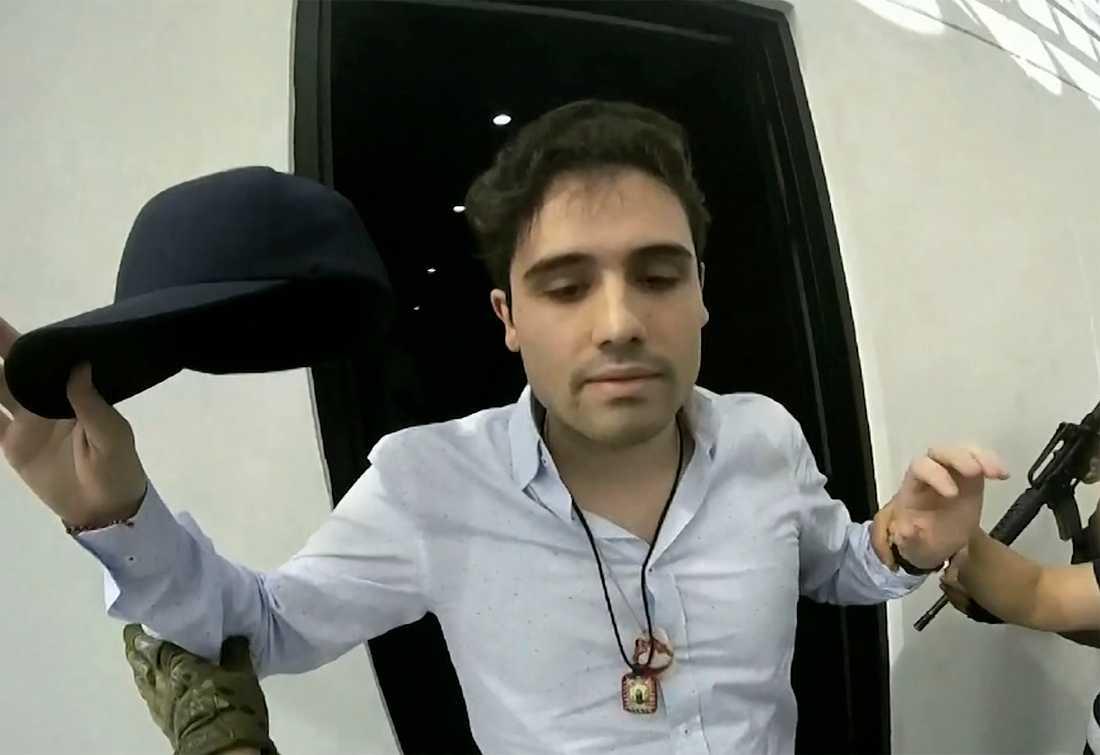 Ovidio Guzmán López greps av polis i mitten av oktober. Han släpptes efter det att Sinaloakartellen, vilken han pekas ut som ny ledare för, blev polis och militär övermäktig.
