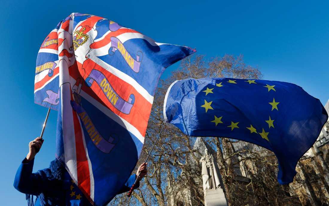 Demonstranter för och emot EU finns ständigt på plats utanför underhuset i London. Arkivfoto.