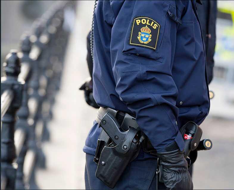 Polisen i Luleå avlivade svarträvsungen.