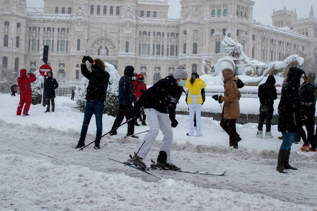 Snöstormen Filomena stänger ner Madrid – tre döda