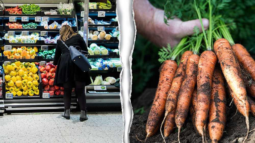 Den gastronomiska stjärnan lyser svagt över stora delar av den reguljära livsmedelsproduktionen. Den har i stället länge varit ensidigt inriktad på volym, pris och egenskaper som passar in i logistikkedjan, skriver debattörerna.
