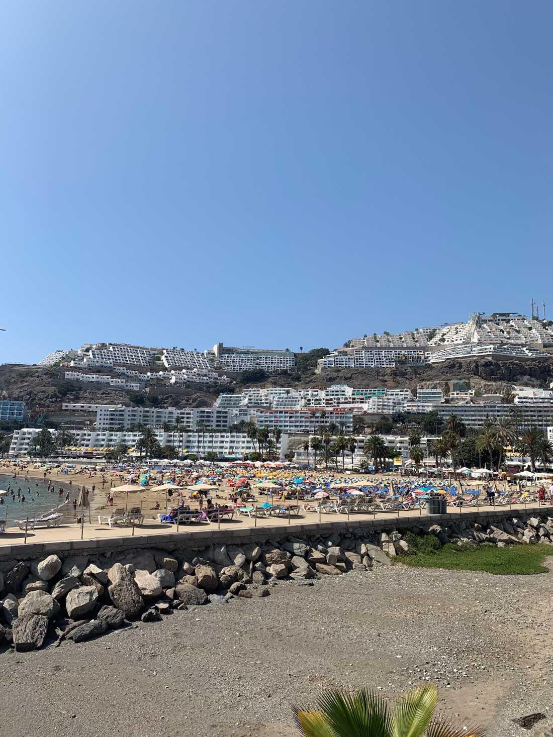 I den populära turistorten Puerto Rico på Gran Canarias sydkust har Ving flera hotell.
