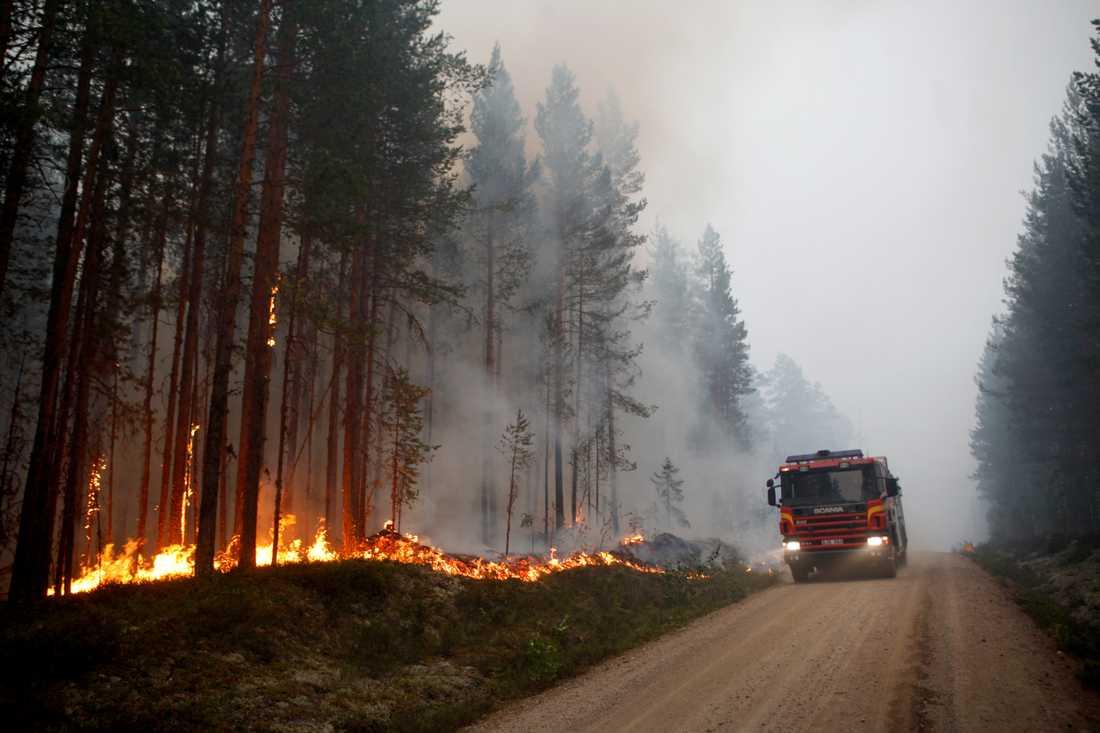 Förra sommarens bränder har fått Nordanstigs kommun att börja bygga upp ett matförråd inför framtida kriser. Arkivbild