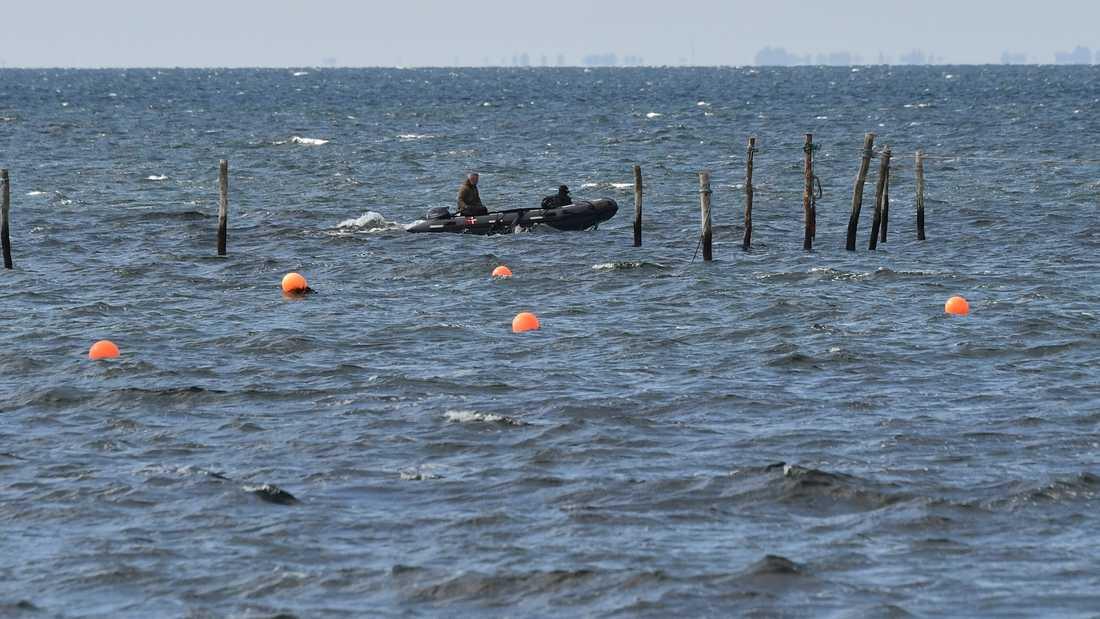 Dykare söker i vattnet där en kvinnokropp påträffats utanför Amager i Köpenhamn.