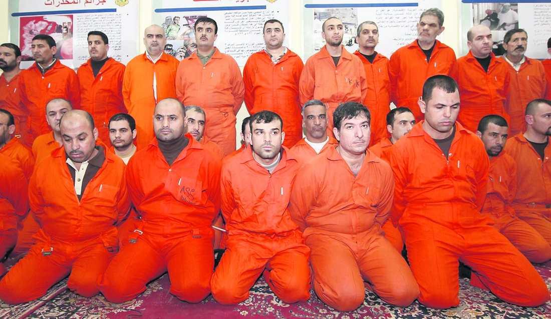 73 gripna Här är några av de 73 al-Qaidasympatisörer som irakiska säkerhetsstyrkor har gripit under de senaste två veckorna.