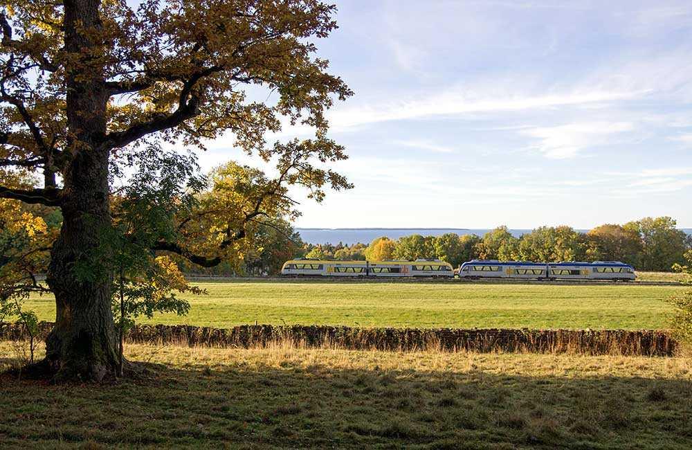 Tågsträcka mellan Lidköping och Mariestad bjuder på öppna landskap, skogar och dovhjortar.