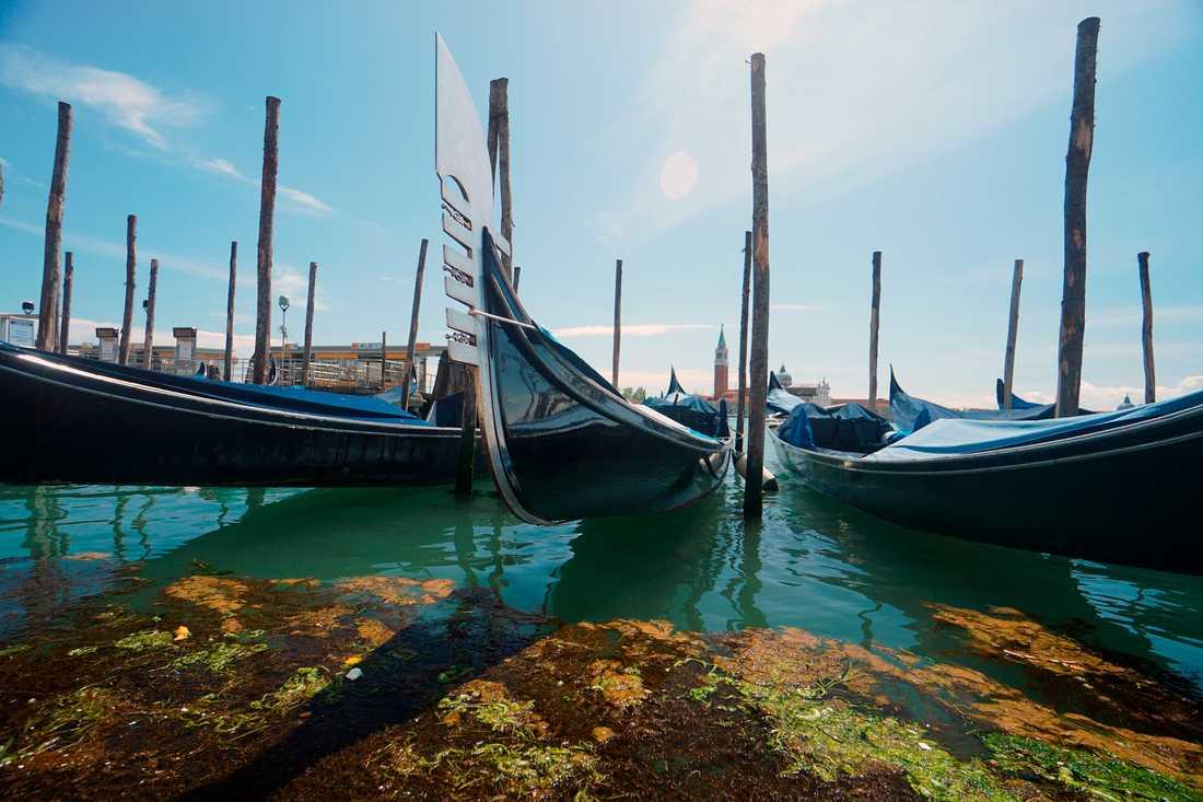 Snart kan italienarna få resa fritt igen. Det framgår dock inte om det gäller resor med gondol – som på bilden från Venedig. Arkivbild.