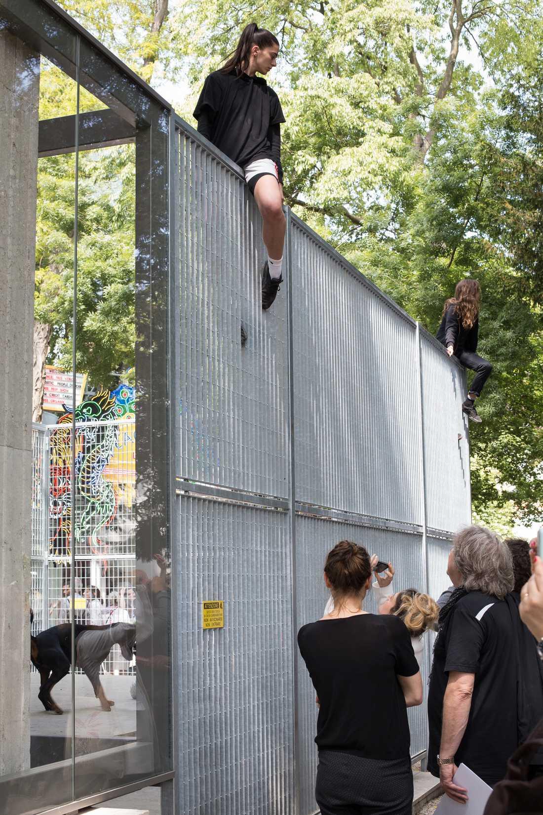 """Anne Imhofs installation """"Faust"""" i den prisvinnande tyska paviljongen."""