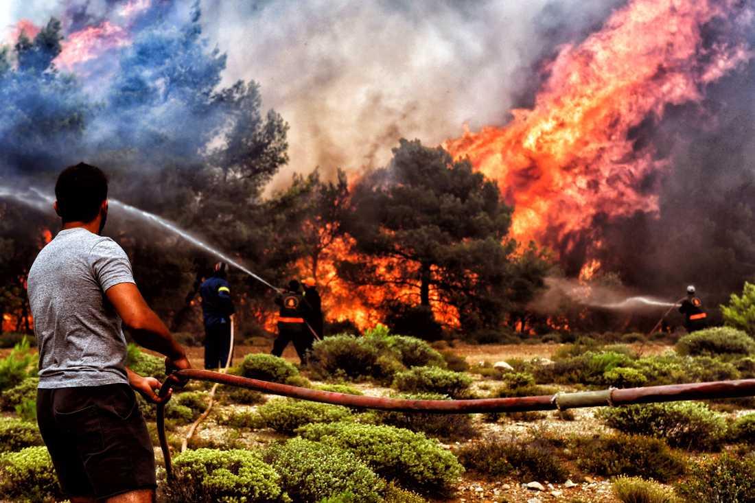 Minst 74 personer har dött i bränderna i Grekland.