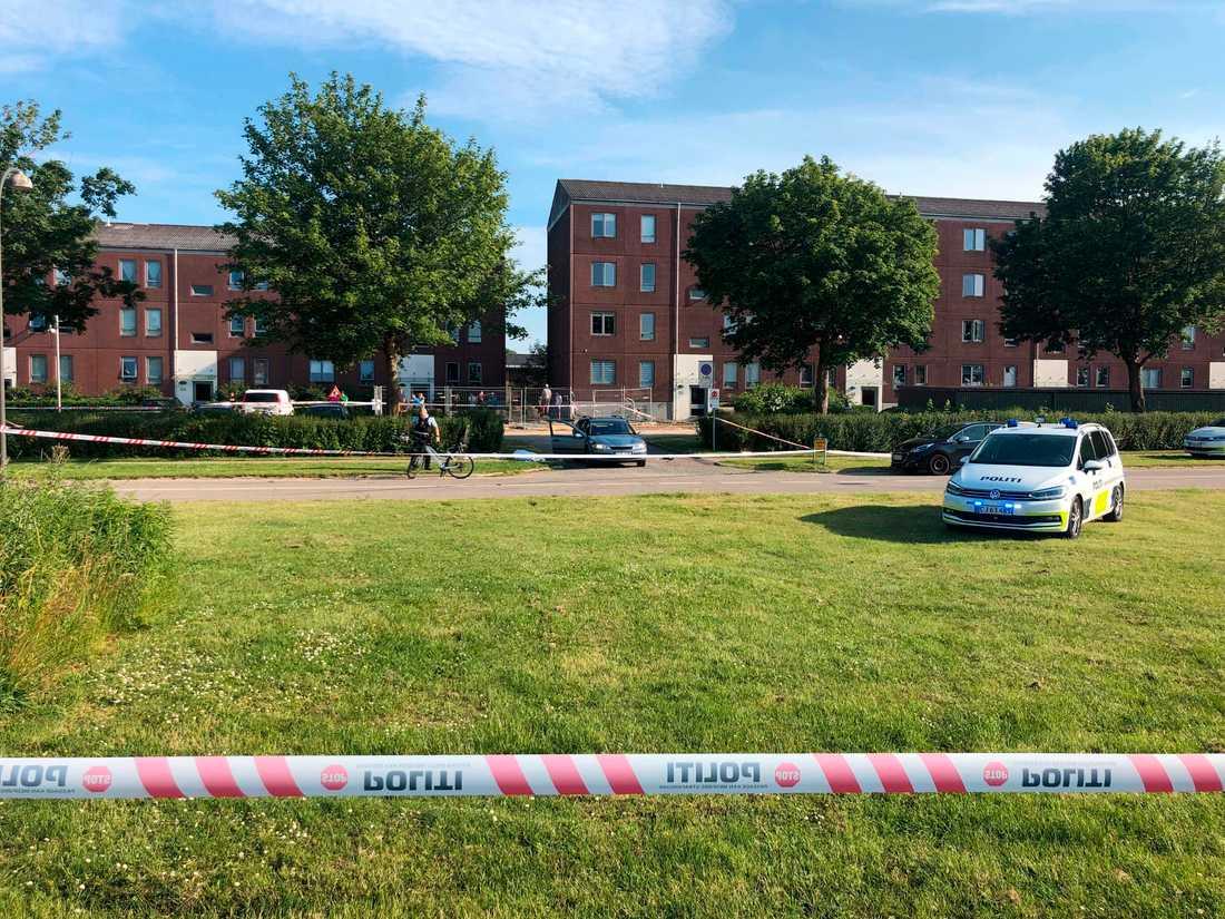 Två personer dog när en svenskregistrerad bil besköts i Köpenhamnsförorten Herlev.