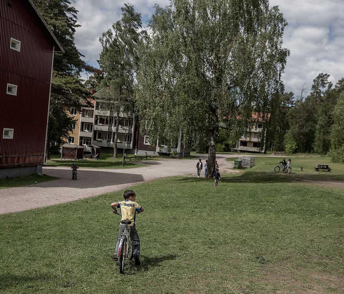 ENORMA SKILLNADER Vissa kommuner tar emot 100 gånger fler asylsökande än andra kommuner.