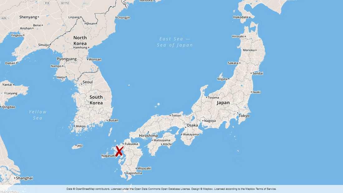Skyfallen har drabbat sydvästra Japan.