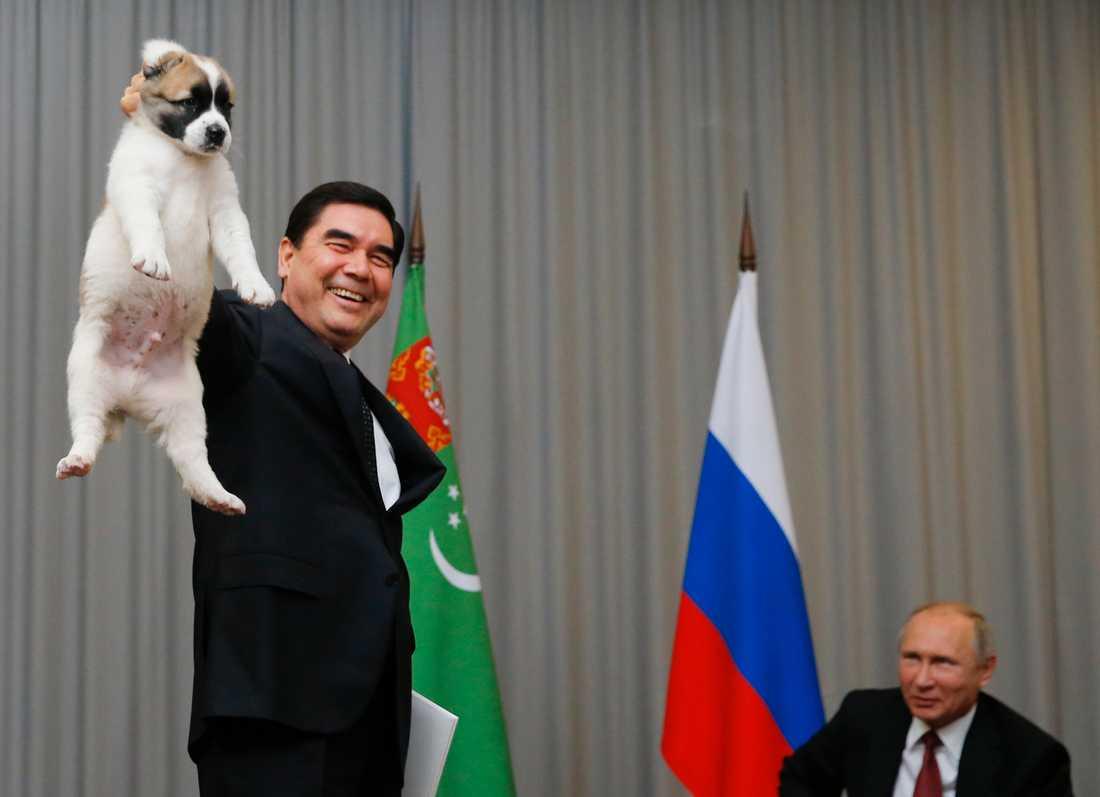 Turkmenistans president Gurbanguly Berdymuchamedov ger sin ryske motsvarighet Vladimir Putin en hundvalp under ett möte i Sotji 2017.
