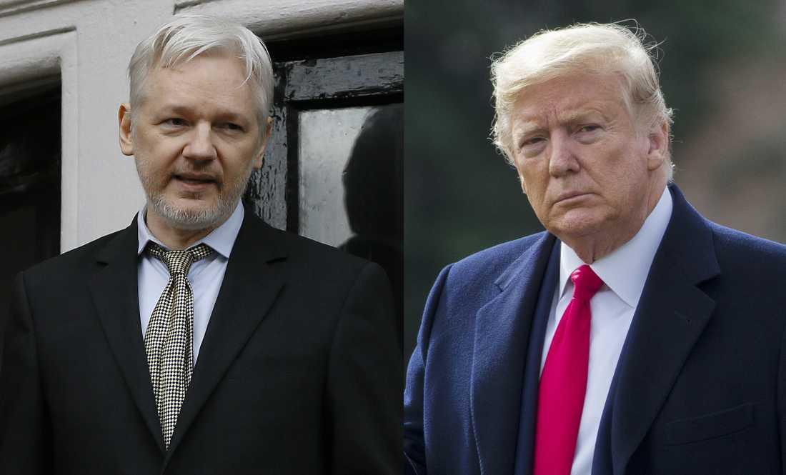 Erbjöd Donald Trump benådning i utbyte mot en politisk tjänst från Assange? Det hävdar Wikileaksgrundarens advokater. Montage.