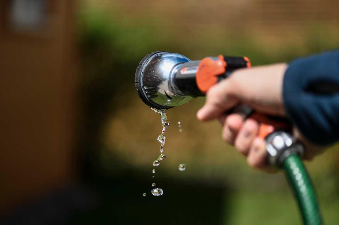 Flera kommuner har infört bevattningsförbud i april och maj.