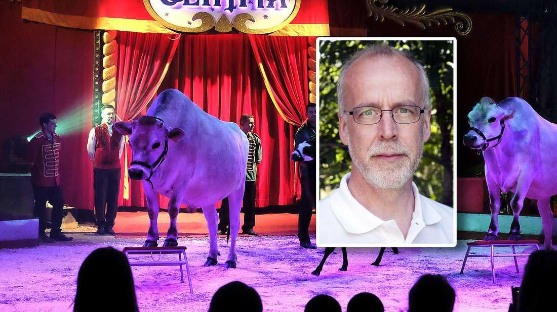 Cirkusdjur är ett fläskben som politikerna slängt till djurrättsaktivisterna, så att de inte ger sig på viktigare väljargrupper, skriver Janne Näsström.