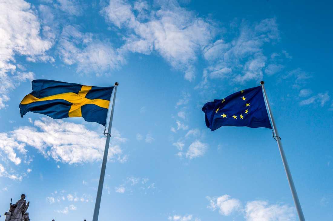 En polsk EU-parlamentariker sprider påståenden om Sverige. Arkivbild.