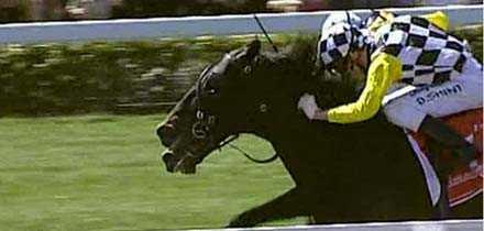 Viewed håller ifrån sig utvändige Bauer och ger tränaren Bart Cummings hans tolfte seger i Melbourne Cup.