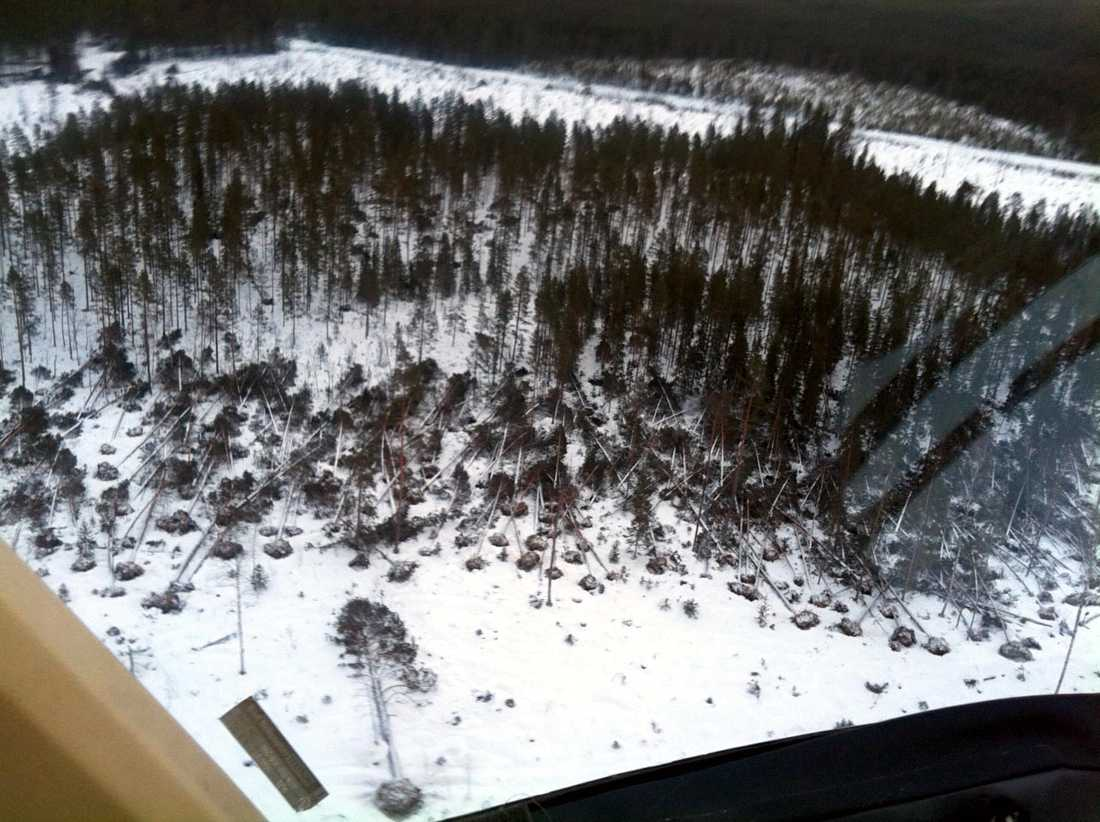 Flygbild över sjön Röringen i sydöstra Jämtland