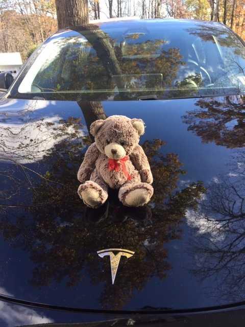 Bo-Boo gled fram på de amerikanska vägarna i en Tesla!