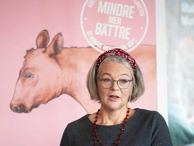 – Jag tycker att det måste bli mycket enklare för konsumenterna att göra rätt val, säger Anna Richert, matexpert på WWF.