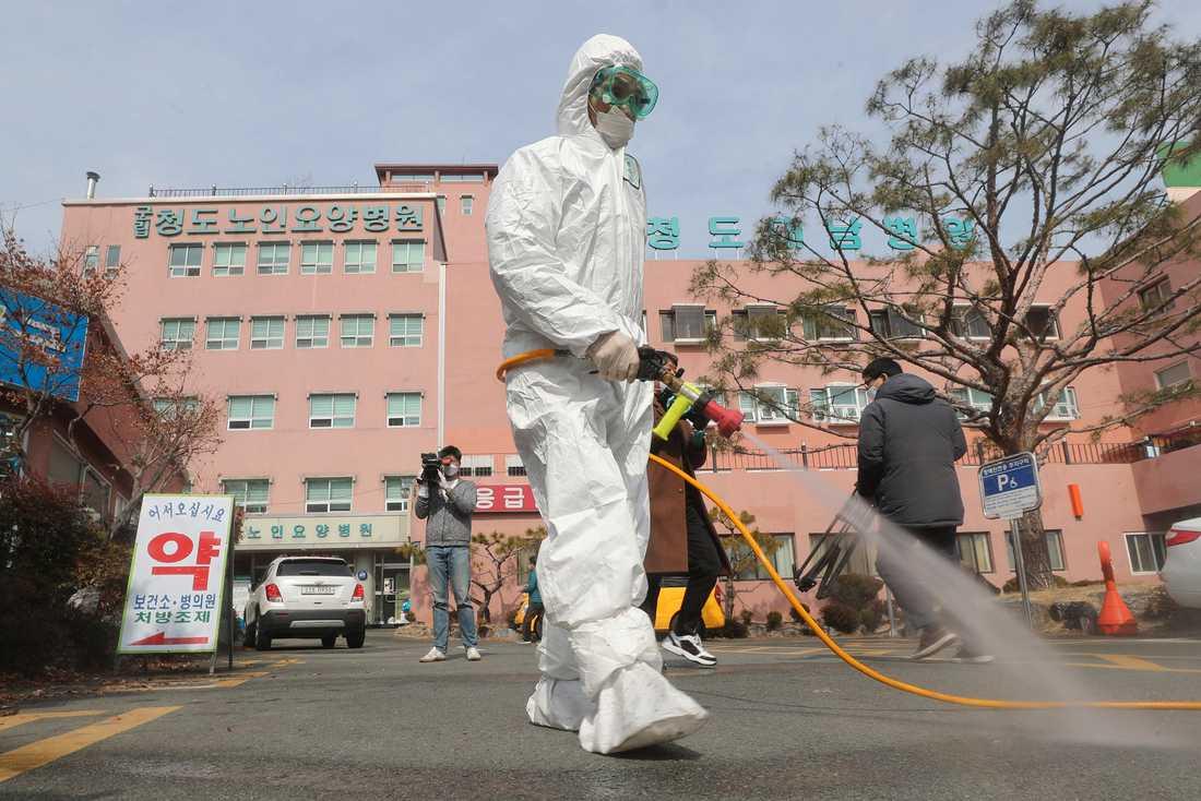 Desinfektionsmedel sprutas på gatan utanför ett sjukhus i Cheongdo i Sydkorea.